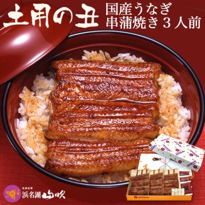 【土用の丑】国産 うなぎ串蒲焼き3串
